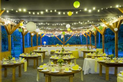 Mini lights accent a wedding reception tent