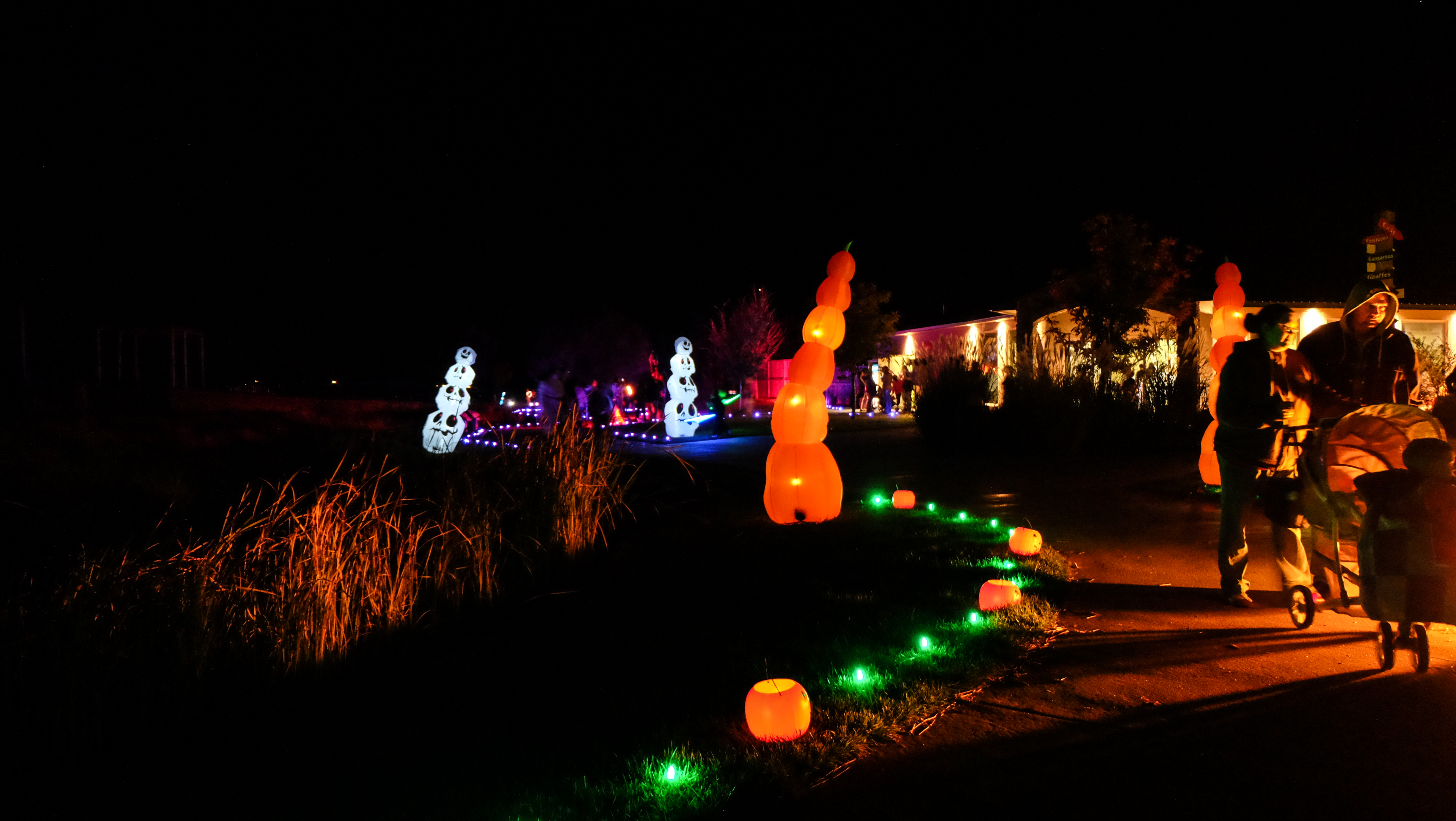 The Tanganyika Wildlife Park Pumpkin Walk - Christmas Light Source