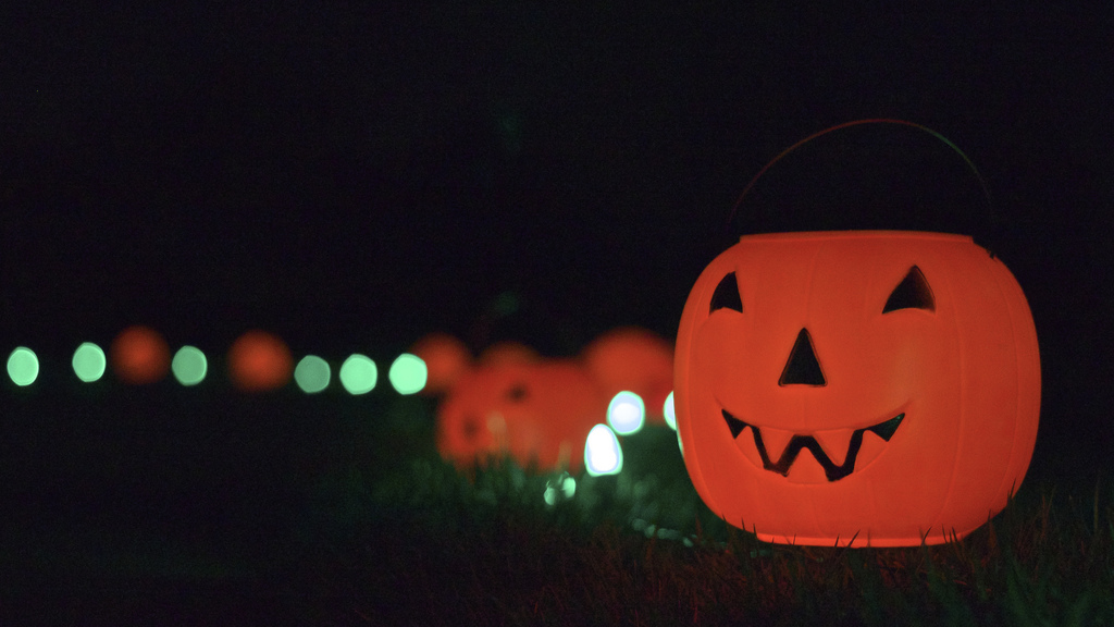 The Tanganyika Wildlife Park Pumpkin Walk