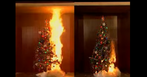210 House Fires a Year Start with Christmas Trees : 5 Ways to Stay Safer During the Holidays