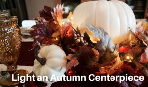 Craft with Lights: Simple Autumn Centerpiece