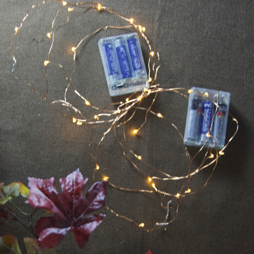 fairy battey lights