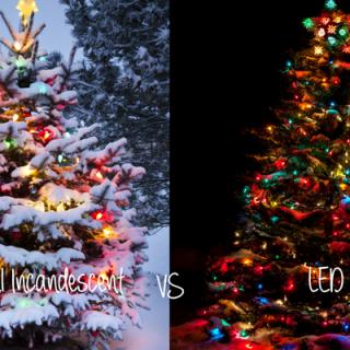 traditional-vs-incandescent