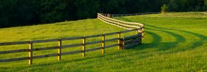 A long wooden fence winds through a lush green farm field