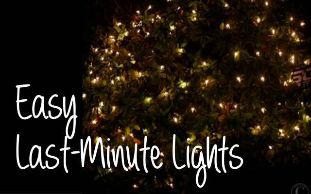 3 types of christmas lights for last minute lighting