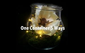 One Container 5 Ways with Battery Lights