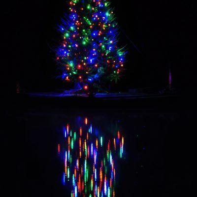 Lights on a tree on a lake!