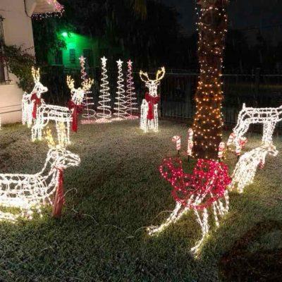 Customer Photo: Over 4000 lights installed on frames!