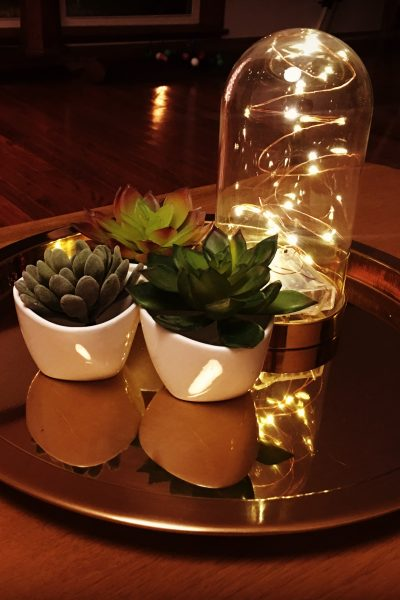 Succulents, dome jar, a brass tray and battery lights!