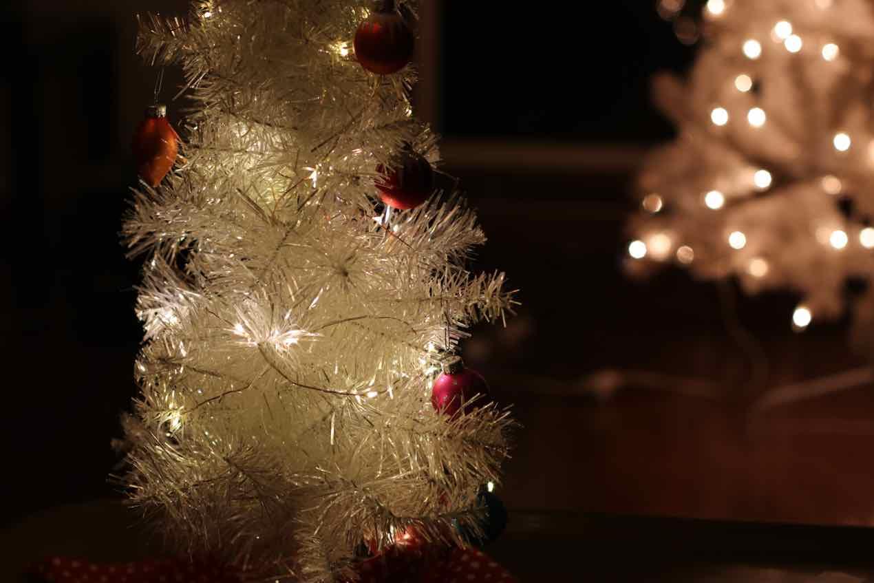 Lighting Up Tiny Trees! - Christmas Light Source