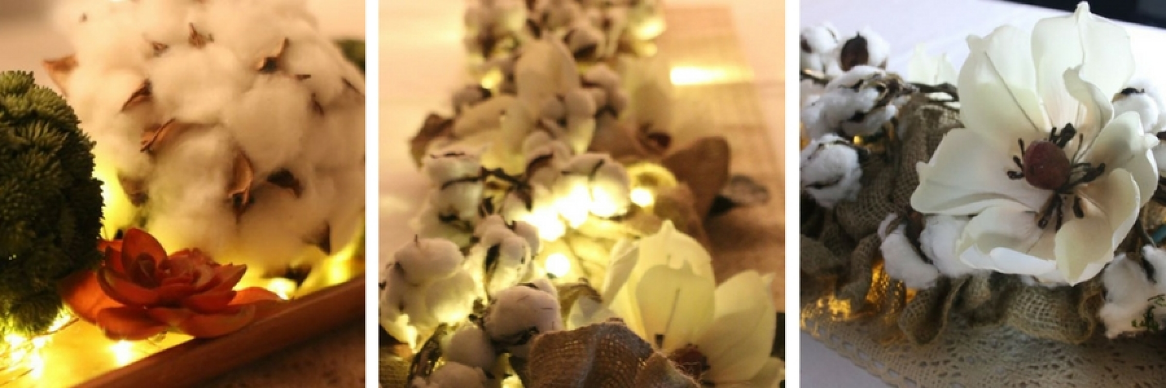 magnolia carousel