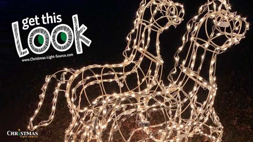 Get This Look: Relighting a Herd of Horses