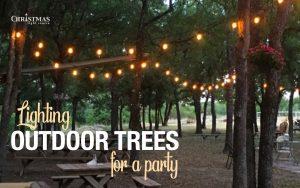 Lighting Outdoor Trees
