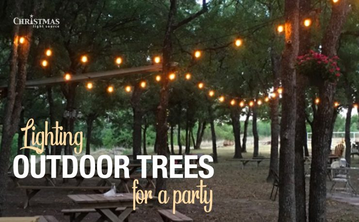 Lighting Outdoor Trees