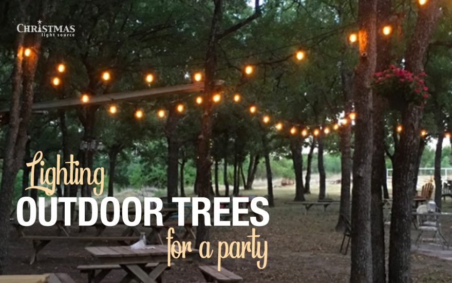 Lighting Outdoor Trees for a Party