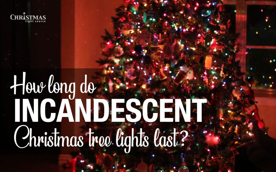 How long do incandescent Christmas tree lights last?
