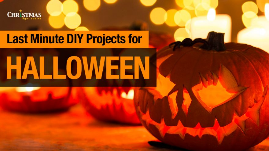 Our Top 6 Last-Minute Halloween DIY Projects