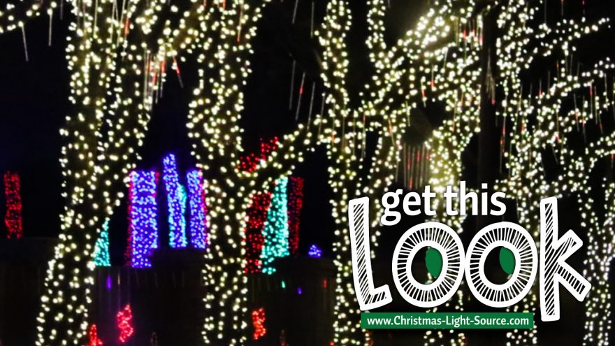 Get This Look: Wrap trees with warm white LED light strings!