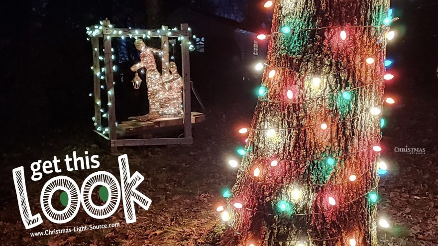 Get This Look: Wrapping Trees with Lights