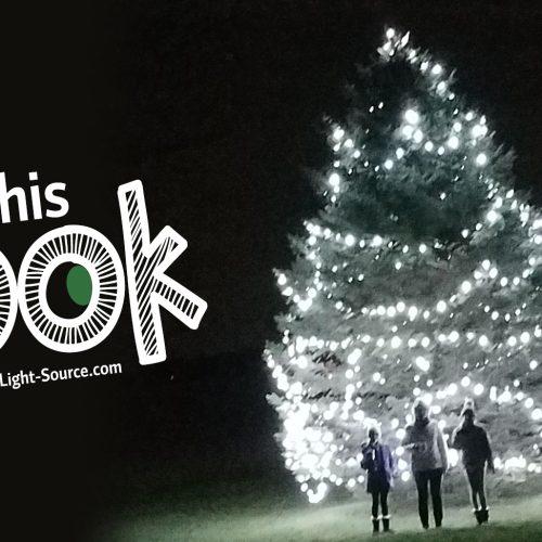 Lighting a huge outdoor Christmas Tree