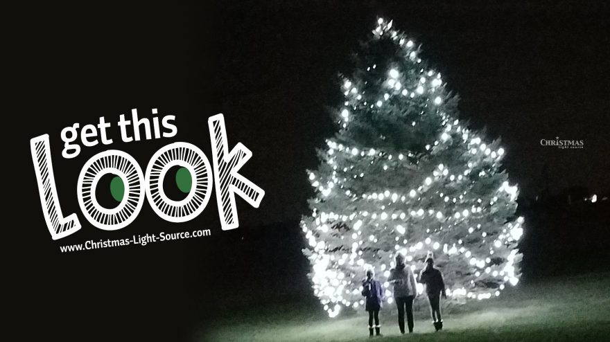 Get This Look: Lighting a HUGE Outdoor Christmas Tree